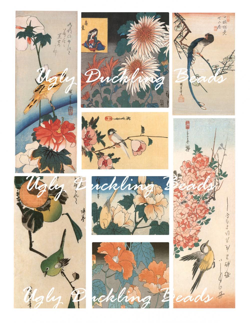 "Digital Images Collage Sheet - Clip Art Elements- Digital Scrapbooking- ""Perched Birds"""
